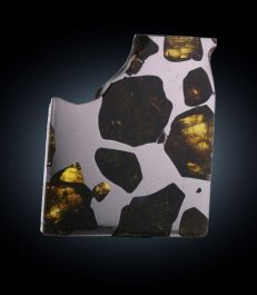 24.5 gr Fukang Meteorite with Stand