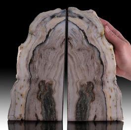 Elegant Petrified Wood Bookends