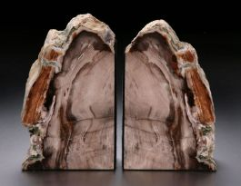 "9"" Petrified Wood Bookends"