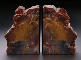 "8"" Petrified Wood Bookends"