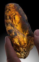 """4.5"""" Green Chiapas Amber"""