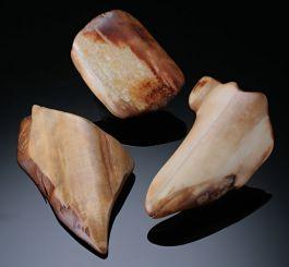Fossil Walrus Ivory ($18.50 each)