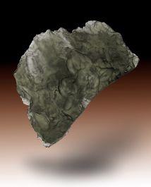 10.7 gram Moldavite