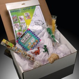 Gift Box with Dinosaur Poster Color Set