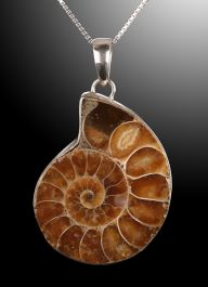 Ammonite Pendant from Madagascar