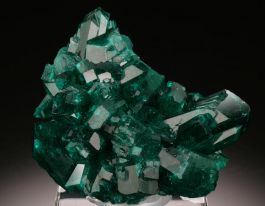 High Quality Dioptase Cluster