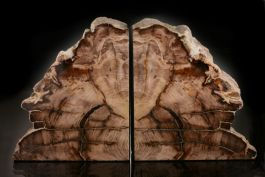Sequoia Petrified Wood Bookends
