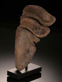 Hadrosaur Toe Bone (with stand)
