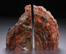 Indonesian Petrified Bookends