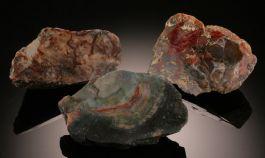 Medium Fossilized Dino Dung (Coprolite)