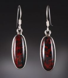 Bloodstone Earrings